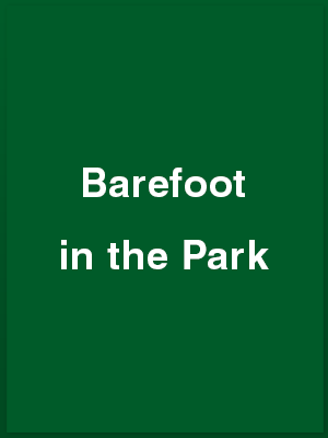 787302_barefoot-in-the-park_playbill